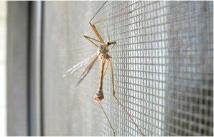 Москитная сетка от насекомых
