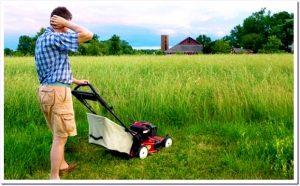 Как выбрать хорошую газонокосилку?